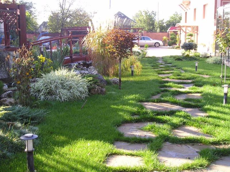 Озеленение приусадебных участков